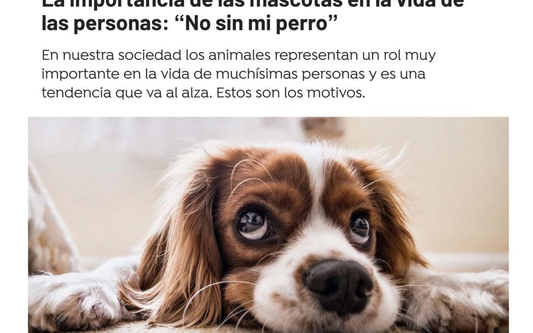 """La importancia de las mascotas en la vida de las personas: """"No sin mi perro"""""""